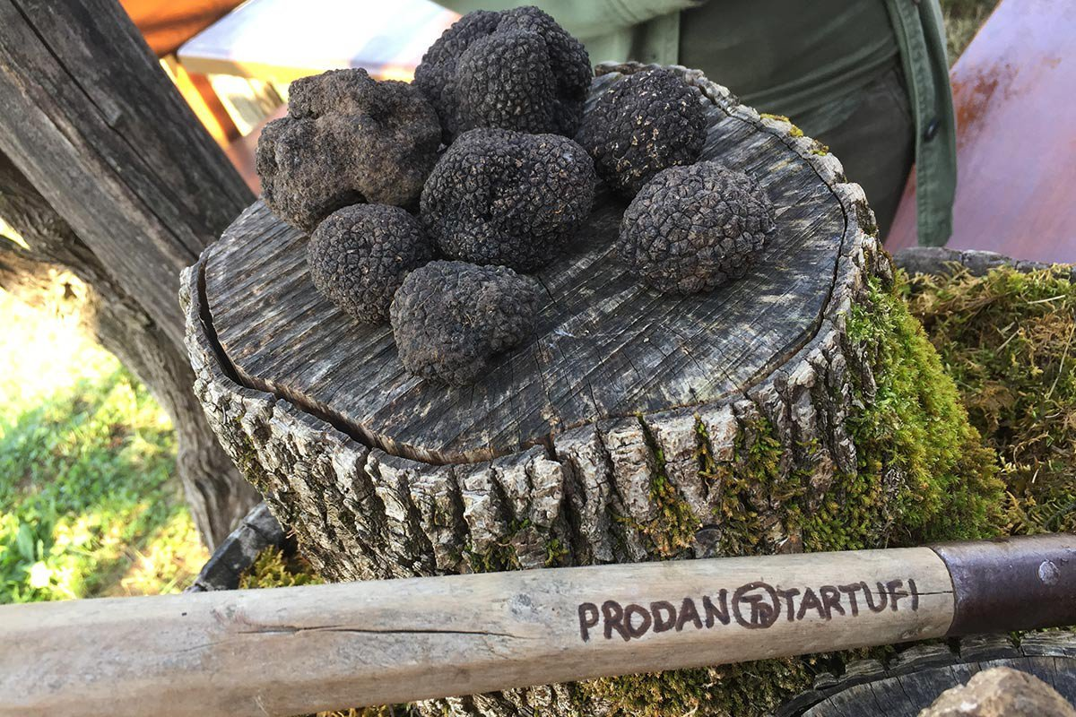 What makes truffles expensive?